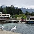 Queenstown, New Zealand by Yurix Sardinelly