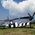 Quick Silver P-51 Color by Peter Chilelli