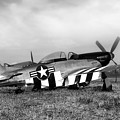 Quick Silver P-51 Mustang by Peter Chilelli