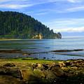Quiet Bay by Marty Koch