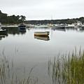 Quiet Cape Cod by Michael Edwards