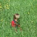 Quiet Fields by Peter  McIntosh