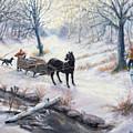 Quiet In The Woods by Steven Assmann