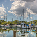 Quiet Marina by Jane Luxton