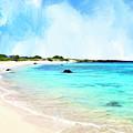 Quiet Shore Near Makalawena by Dominic Piperata