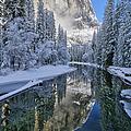 Quiet Winter Morning by Brenda Tharp