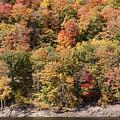 Quinnipiac River Color by Bob Phillips