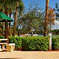 Quite Corner In Weston Florida by Zalman Latzkovich
