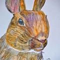 Rabbit Watercolor 15-01 by Maria Urso