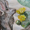 Rabbit With Flower by Kathy Mitchell