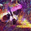 Raccoon Animal Cute Mammal  by PixBreak Art