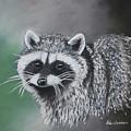 Raccoon by Louise Andersen