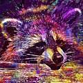 Raccoon Wild Animal Furry Mammal  by PixBreak Art