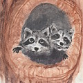 Raccoons by Jennie Hallbrown