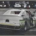 Race Cars by Anita Goel