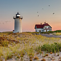 Race Point Light Cape Cod Square by Bill Wakeley