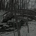 Rachel Carson Trail Bridge by Shelley Smith