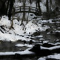 Rachel Carson Trail  by Shelley Smith