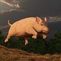Racing Pig by Daniel Eskridge
