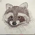 Racoon by Elizabeth Hodges