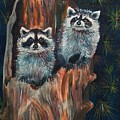 Racoons by Sylvia Stone