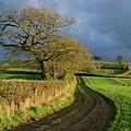 Raddon Top In Mid Devon by Pete Hemington