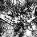 Radiance In Monochrome  by Tom Gowanlock