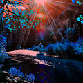Radiant Energy by Vijay Sharon Govender
