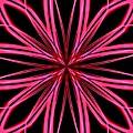 Radioactive Snowflake Red by Randolph Ping