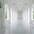Raffles Singapore by Hans Janssen