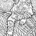 Ragdoll Kitten - Coloring Image by Chantal Candon