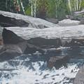 Ragged Falls by Betty-Anne McDonald