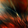 Raging Fire by Jim Young