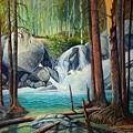 Raging Solitude by Art West