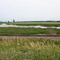 Rail Refuge by Dylan Punke