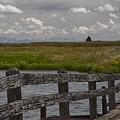 Railroad Bridge by Idaho Scenic Images Linda Lantzy