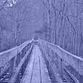 Railroad Bridge by Trish Tritz