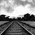 Railroad Tracks - Charcoal by Michael Vigliotti