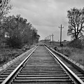 Railroad Tracks by Matthew Angelo
