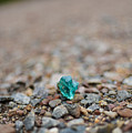 Trackside Treasure by Alex Blondeau