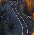 Rails by Doug Gibbons