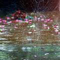 Rain Dance by Kevin Myron