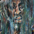 Rain Falls For Me by Robert  Nelson