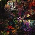 Rain Forest by David Lane