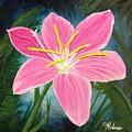 Rain Lily by Helene Thomason