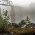 Rain N Fog by Skip Willits