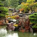 Rain On Kyoto Garden by Carol Groenen