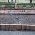 Rain, Rain, Go Away by Clare Bambers