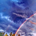 Rainbow And Scalar Waves IIi by Jane Tripp