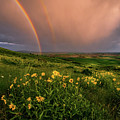 Rainbow At Steptoe Butte by Francisco Gomez